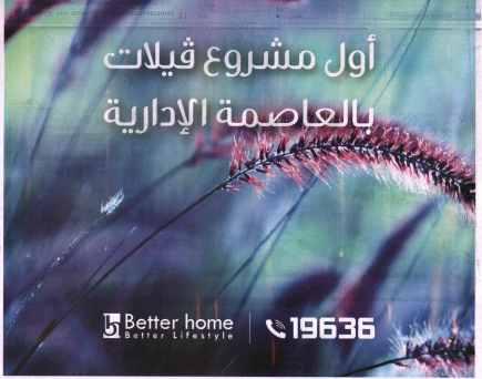 Al Ahram 4 Aug PB.19