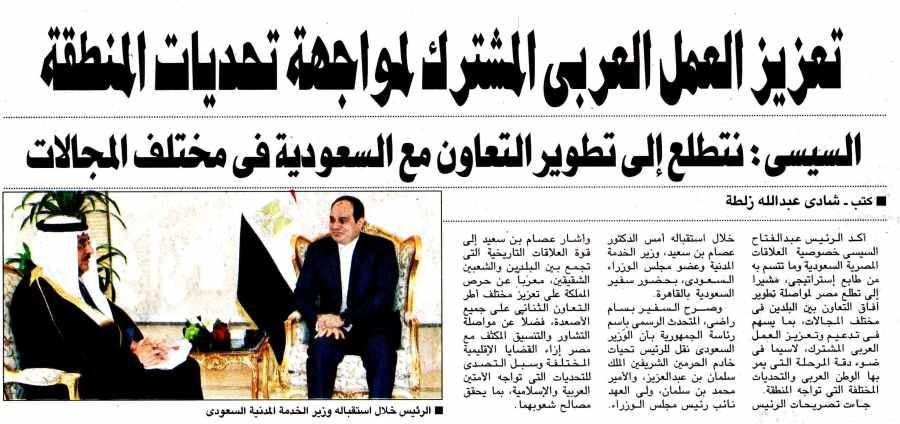 Al Ahram 7 Jan P.8.jpg