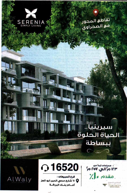 Al Ahram 30 March P.13.jpg