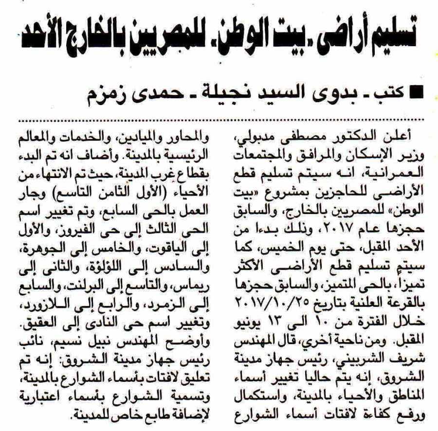Al Ahram 29 May P.8.jpg