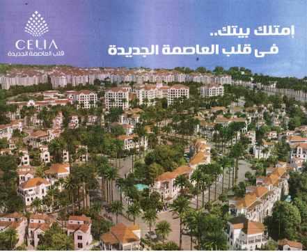 Al Ahram 13 July PA.40